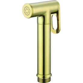 Head shower ICH 3024G