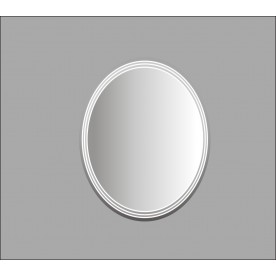 Mirror ICM R65
